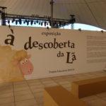"""Visite a exposição """"À descoberta da lã"""" na Feira da Luz"""