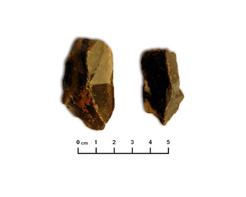 Conjunto de lascas de sílex