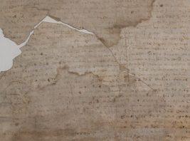 Subsídios documentais para a História de Montemor-o-novo (Século XVI)